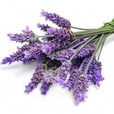 Zapach aromat do mydełek LAWENDA 10ML