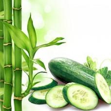 Zapach do mydełek Bambus z ogórkiem 10ML