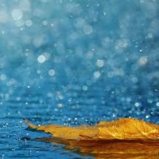 Zapach aromat do mydełek COOL RAIN 10ML