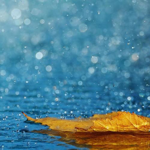 Aromat do mydeł i mydełek COOL RAIN 100ML