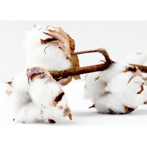 zapach do świec Cotton 10ML Zróbmydełko